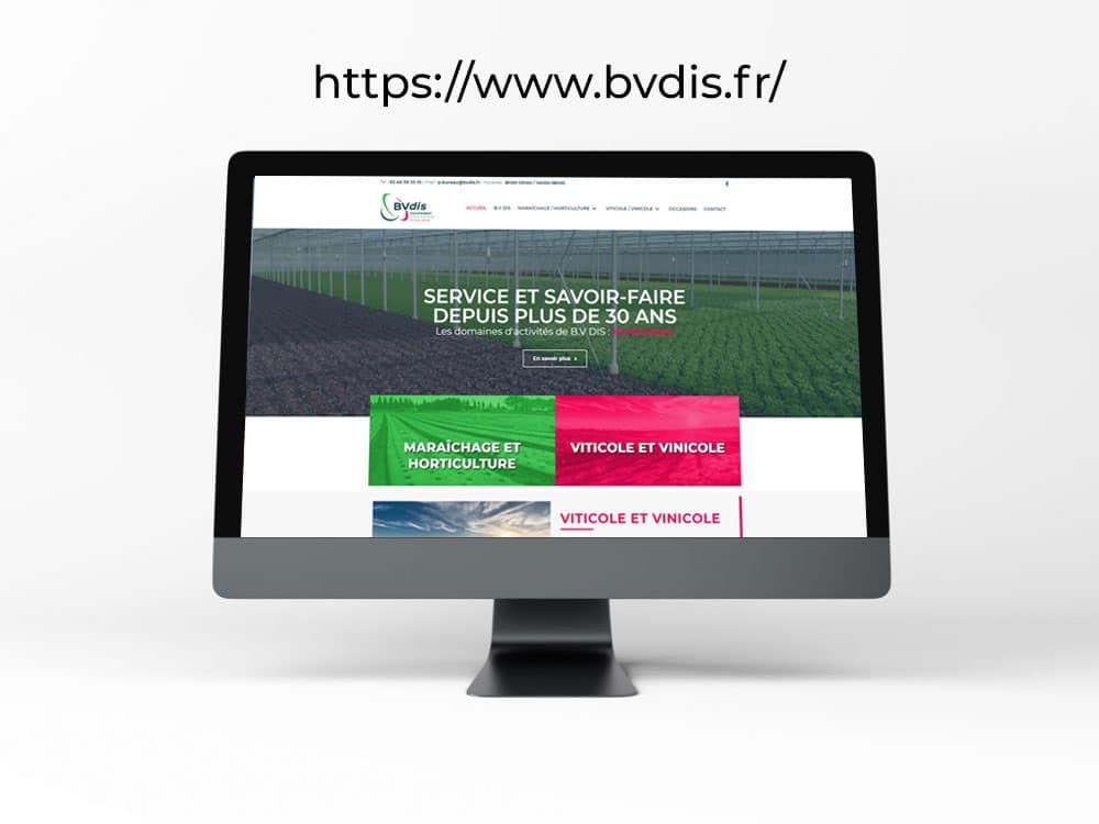 Site internet BVDIS